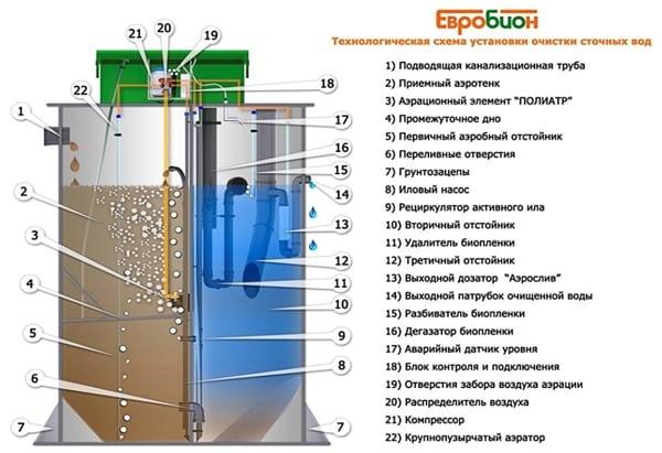 евробион инструкция по установке