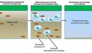 princip-bakterialnoj-chistki