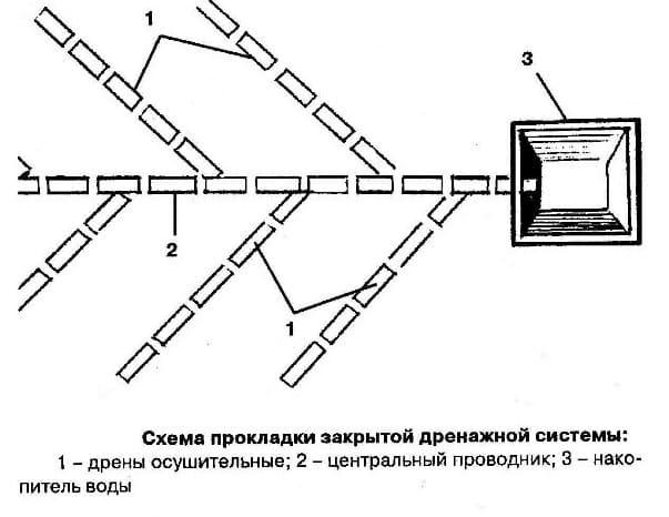 Схема естественной дренажной системы