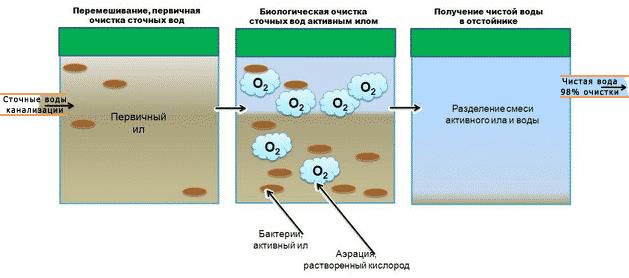 Принцип бактериальной чистки