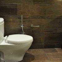 Все, что вам нужно знать про душ для биде: виды и особенности монтажа